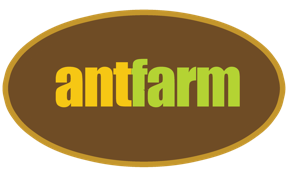 antfarm1